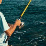 サビキ釣りの時期(季節)・時間・潮について【詳しく解説します】